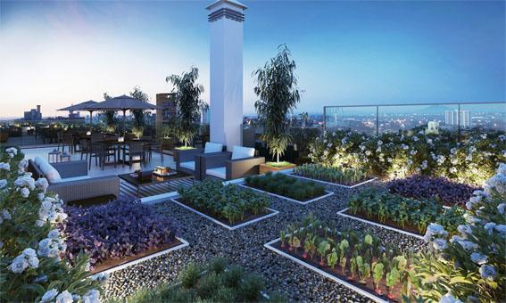 Tendência mundial, hortas urbanas conquistam os brasileiros